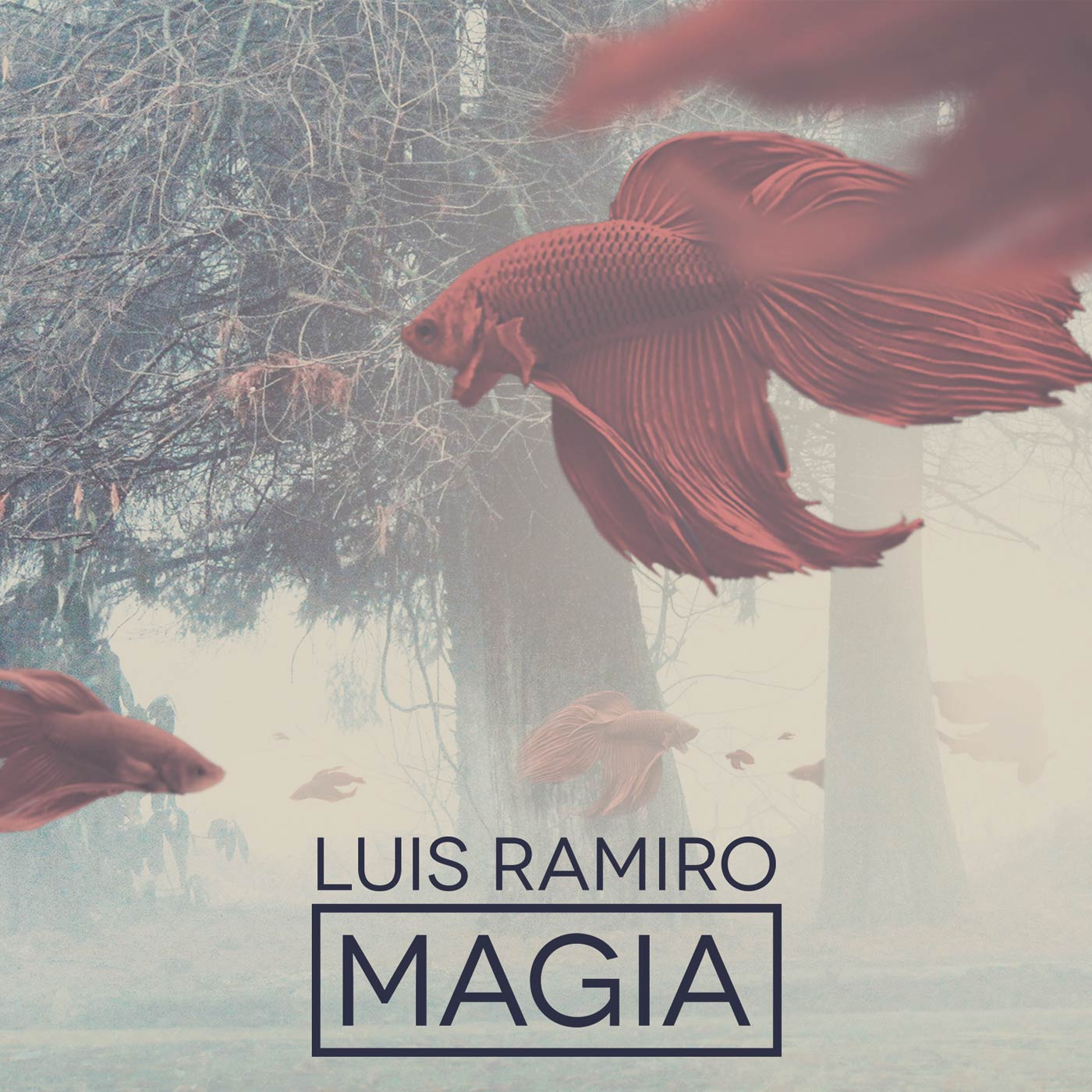 luis_ramiro_magia-portada